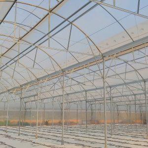 Thi công nhà màng trồng dưa lưới
